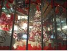 069クリスマスツリー.jpg