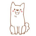 102-白い犬.jpg