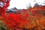 104-秋の京都.jpg